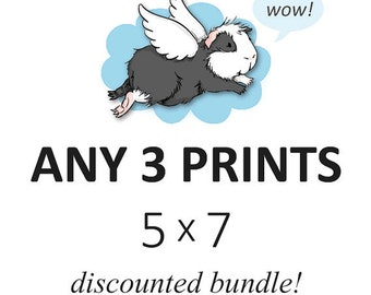 DISCOUNTED SET - you choose any three 5 x 7 prints - cute guinea pig art custom set of 3, listing