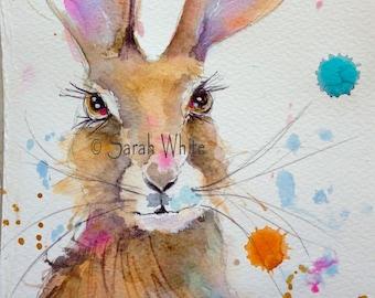Original Collectible Watercolour Hare