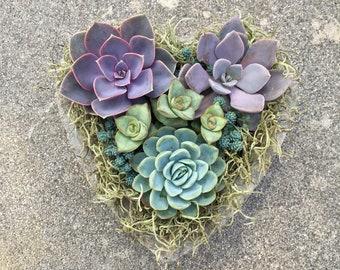 SUCCULENT HEART PLANTER, Succulents, Mother's Day, Get Well, Sympathy, Succulent Planter, Bereavement, Handmade