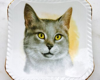 Royal Adderley Grey Tabby Cat Collectible Trinket Dish