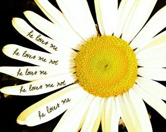 Daisy Print, Daisy Picture, Daisy Decor, Love Quote, Love Print, Yellow Flower Photo, Love Quote Print, Daisy Quotes, Daisy Decor, Daisy