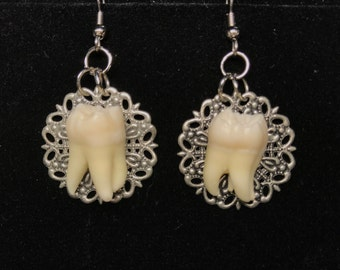 Genuine Human Molar Earrings