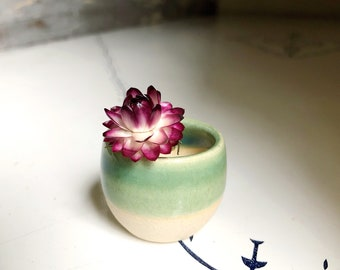 Miniature pottery - tiny pot in mint on white clay