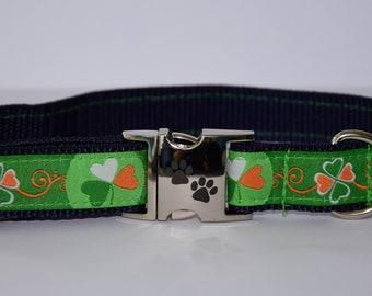 Dog collar, wheaten terrier, shamrock