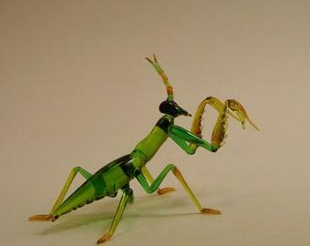 Praying Mantis,