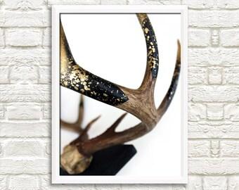 Art Print : Antler Poster, Black and Gold Splatter