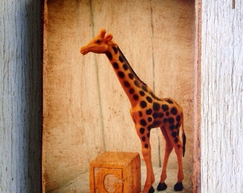 Vintage Toy G is for Giraffe Art/Photo - Wall Art 4x6