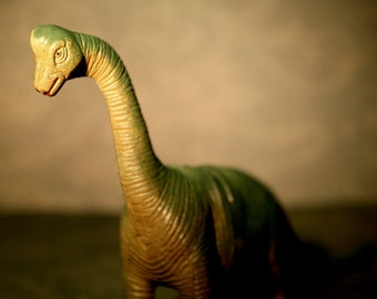 Brachiosaurus  - Dinosaur Photograph - Various Sizes