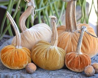 Golden Harvest Silk Velvet Pumpkins and Acorns with Real Stems