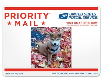 PRIORITY MAIL-- DOMESTIC Shipping