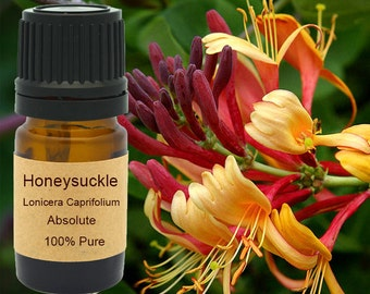 Honeysuckle Absolute 5 ml, 10 ml or 15 ml