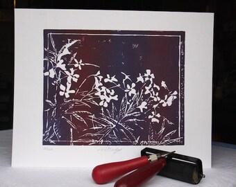 Vinca - Purple & Red