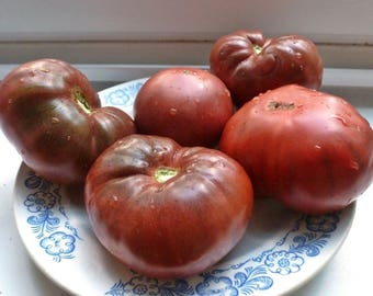 Black Brandywine Tomato Heirloom Garden Seed Non-GMO 30+ Seeds Incomparably Sweet Open Pollinated Gardening
