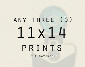 Photography - Any Three (3) 11x14 Lustre Prints