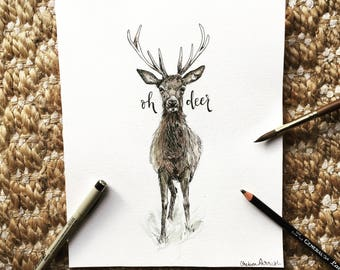 Oh Deer pen and ink drawing with watercolor wash | original drawing | 8x10