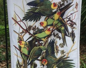 Carolina Parrot, Jumbo Audubon Garden Flag