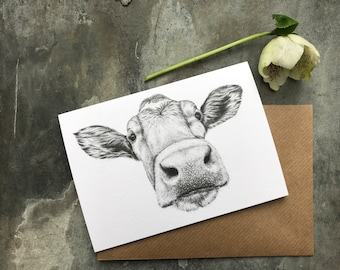 Guernsey Cow Blank Greetings Card from Original Pencil Drawing