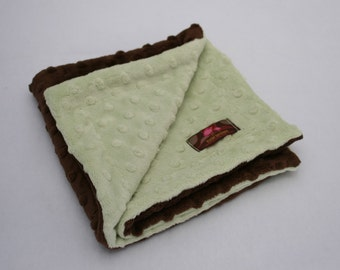 Minky Lovie - 15 x 15 - Chocolate and Pistachio -