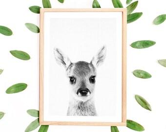 Deer Print, Deer, Black and White, Deer Printable, Woodland Baby Shower, Baby Animal Prints for Nursery, Deer Photography, Deer Wall Art