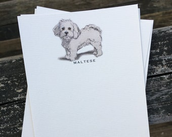 Maltese Dog Note Card Set