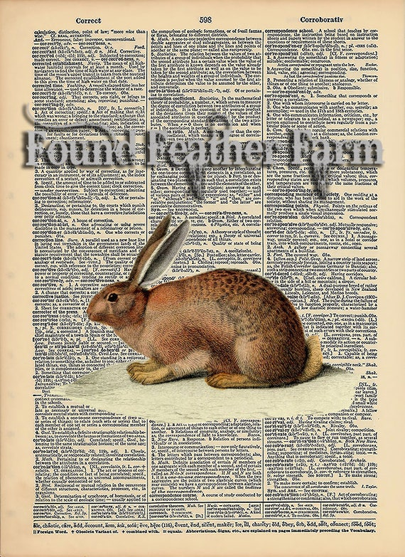 "Vintage Antique Dictionary Page with Antique Print ""English Rabbit"""