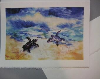 Sea turtles, Baby Sea Turtles, Loggerhead Turtle art, 5 x 7 Note Card, Pick One  WatercolorsNmore Sea Ocean