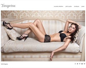 Shopify eCommerce Website Design komplett Custom Web Design Branding mit Facebook Schaufenster 20 Produkte 5 Kategorien 網頁設計 電子商務網站設計