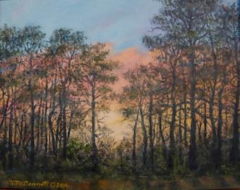 Border Pines - Original 8 X 10 inch Oil Painting UNFRAMED