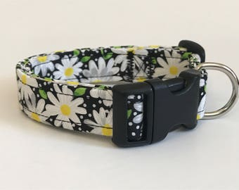 Daisy daisies and dots on black print dog collar - you choose the size