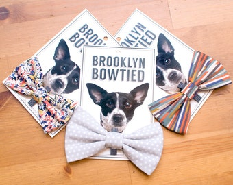 Mystery Bow Tie! — Dog Bowtie, Brooklyn Bowtied, Denim, Chambray, Geometric, Graphic, Triangles, Hip, Hipster