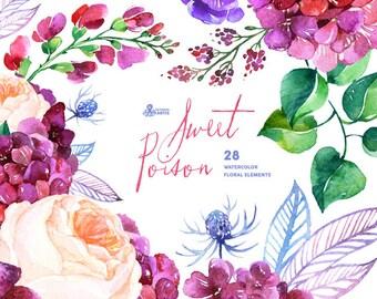 Sweet Poison: 28 Watercolor Elements, hydrangea, roses, poppy, wedding invitation, floral, greeting card, diy clip art, purple flowers