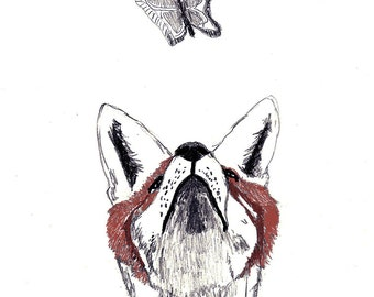 Fox Art, Fox Drawing, Fox Print, Butterfly Art  - Fox and Butterfly - The Chase