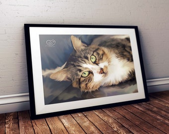 Cat Art Kevin Limited Edition