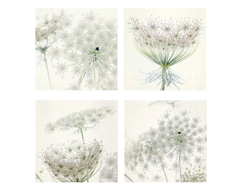 Four Queen Anne's Lace Print Set, White Floral Art Print,  Flower Photography, Housewarming Gift, Cottage Chic Decor, Nursery Decor