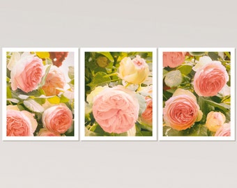 Floral print set of 3 Botanical prints set Pink roses wall art set of three prints bedroom wall art set 3 photo wall decor Pink flower print