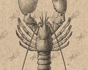 Vintage image Lobster Crawfish Omar Instant Download Digital printable clipart graphic - scrapbooking, burlap, kraft, mail art etc HQ 300dpi