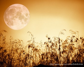 Full Harvest Moon Nature Silhouette  -Grass Sky -Yellow Black -Fine Art Print -Home Decor Wall Art