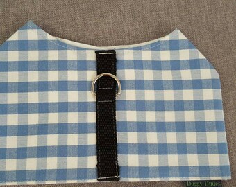 Harnesses in Blue and White Check
