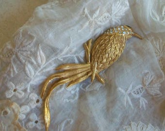 Vintage bird brooch, Edgar Berebi, large bird, gold tone bird, parrot, designer, signed, figural, new old stock, NOS, statement jewelry