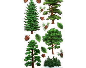 Tree Stickers, Green Pine Tree Stickers, Brown Acorn, Pine Cone, Nature Woodland Supply, Planner Sticker, Scrapbook Camping Party Invitation