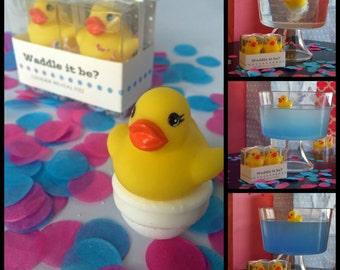 Waddle It Be?  Rubber Duck Gender Reveal Fizz