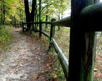 Along the path 2