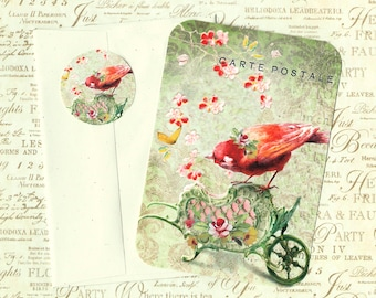 Flat Note Cards, Bird Lover, Bird Note Card, Note Cards & Stickers
