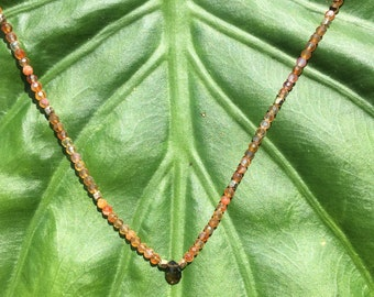 Crazy for Carnelian Necklace