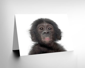 Animal Bonobo Chimp Chimpanzee Baby Young Birthday Blank Greetings Card CL1018