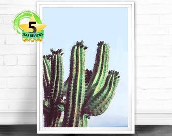 Cactus Print, Cactus Decor, Cactus Art, Cactus Poster, Cactus Wall Art, Cactus Wall Decor, Cactus, Cactus Printable, Poster, Cacti, Desert