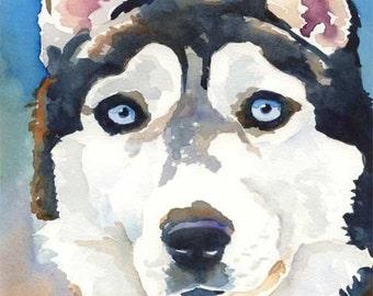 Siberian Husky Art Print of Original Watercolor Painting - 11x14