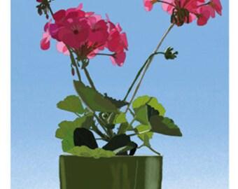 Flower Greeting Card, Blank, Pelargonium Design No A6043