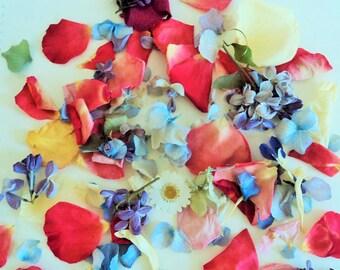 WEDDINGFetti™, Biodegradable Petals, Flower Confetti, Ecofriendly Wedding, Wedding Throw, Dried Flowers, Flower Sprinkles, Wedding Exit