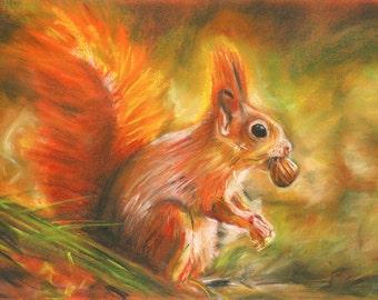 Red Squirrel art, Squirrel chalk pastel, Red squirrel print, Nature art